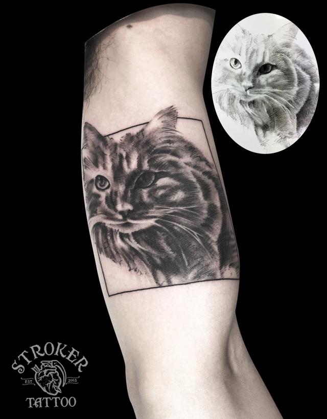 猫 ペンシルアート タトゥー