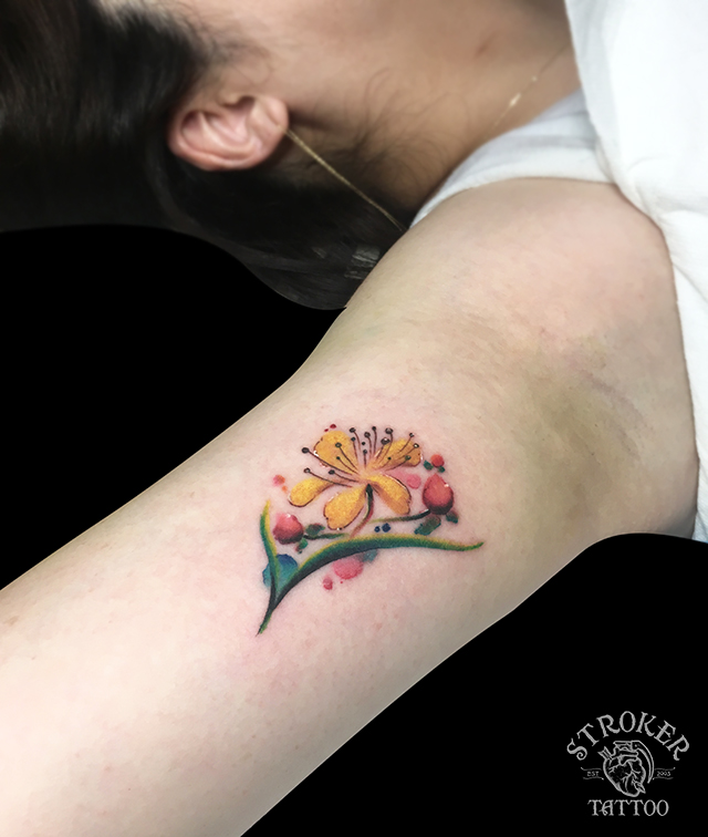 水彩タトゥー、ヒペカリウム