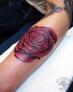 color1611-kan-redrose
