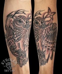 kyo1511-owl