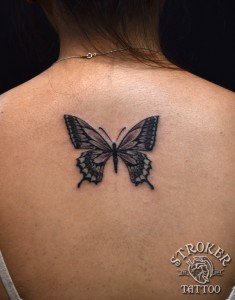 kyo1609-butterfly