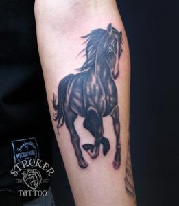 shun1510-horse