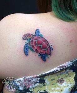 kan1704-turtle
