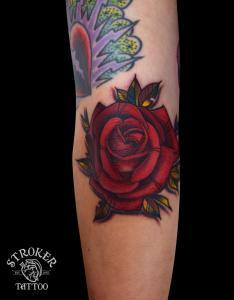 shun1609-red-rose